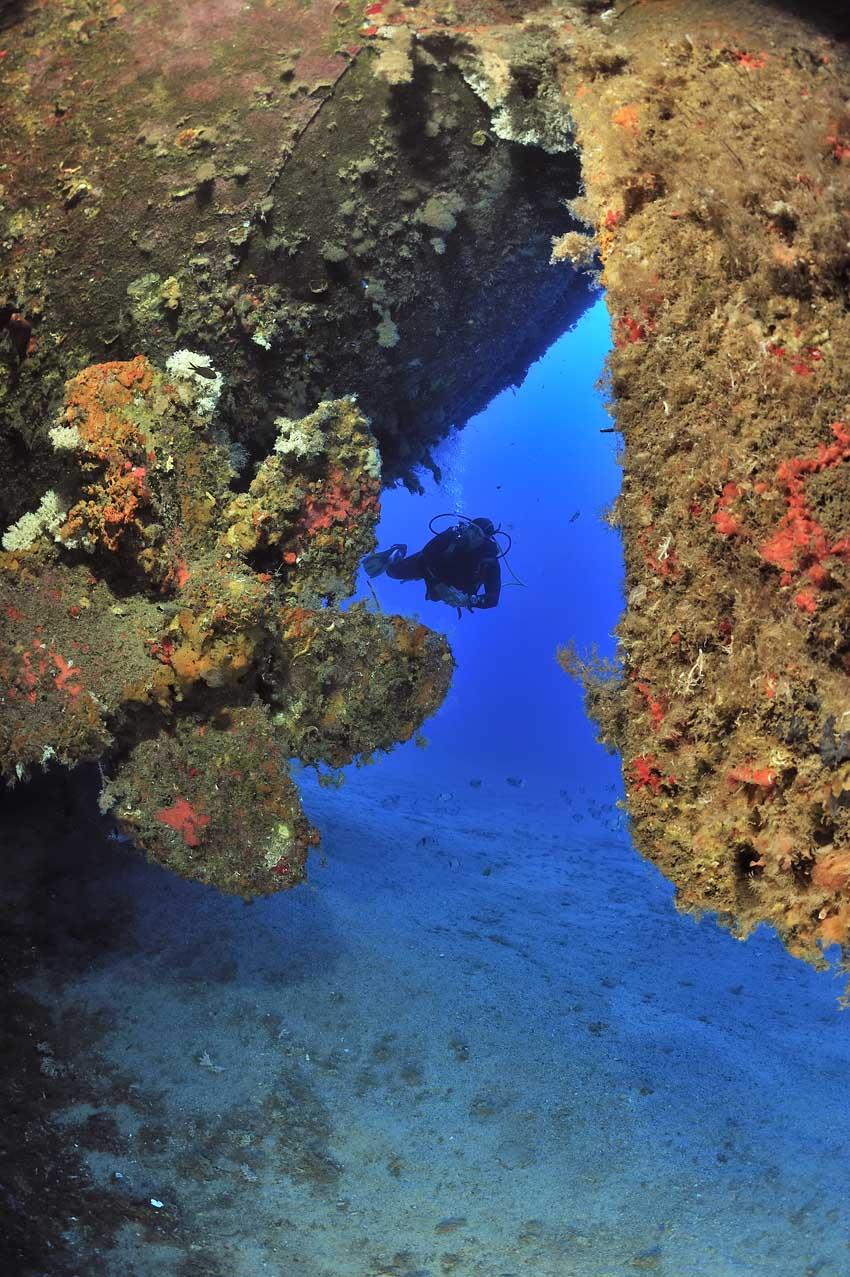 Plongeur près de l'hélice d'une épave - Diver near the propeller