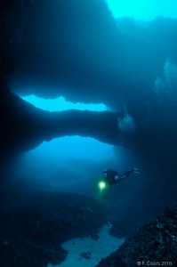 Gozo Diving - Double Arch Reef