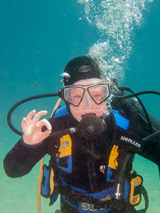 Beginner Dive