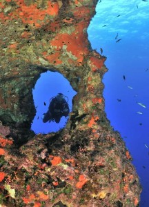 Un plongeur ˆ travers un trou dans le tombant - A diver through a hole in the drop off